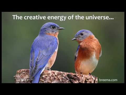 The creative energy of the universe...