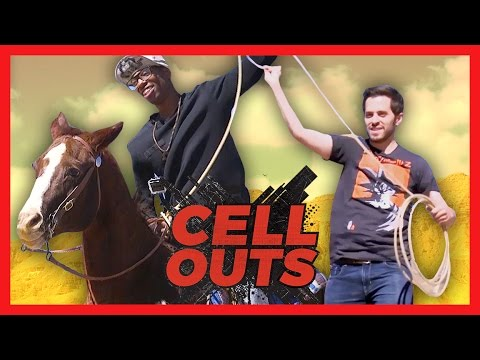 TAMING WILD HORSES (Cell Outs)