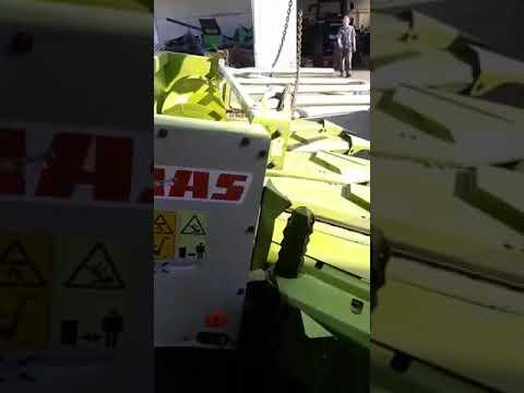 Dana marine for shipping and custom clearance