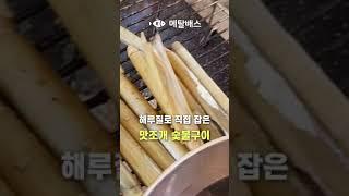 #맛조개해루질숯불구이#캠핑요리레시피#Shors 태안 몽…