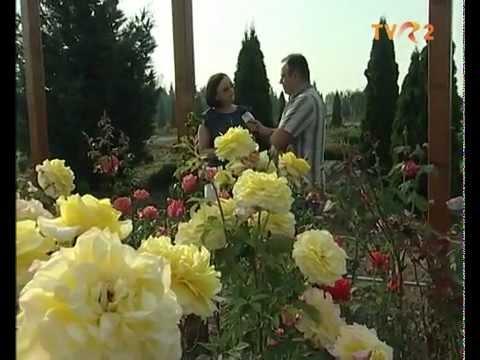 Eutopia Gardens on national TV (TVR2 21.09.2014 Ferma)