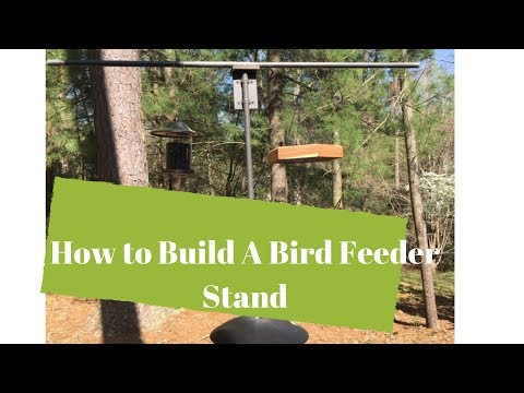 How To Build A Bird feeder Stand