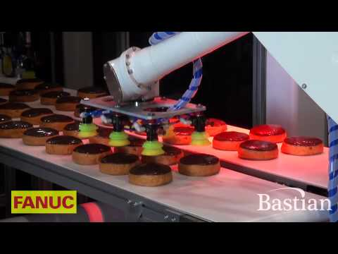 Vision Guided Robotic Picking- Quick Industrial Robots
