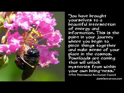 An Intersection of Energy & Information ∞The 9D Arcturian Council, Channeled by Daniel Scranton