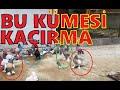Bu Kümesi Kaçırma. Ankara Oyun Kuşları Çok Ucuza Gidiyor. 0534 715 94 96