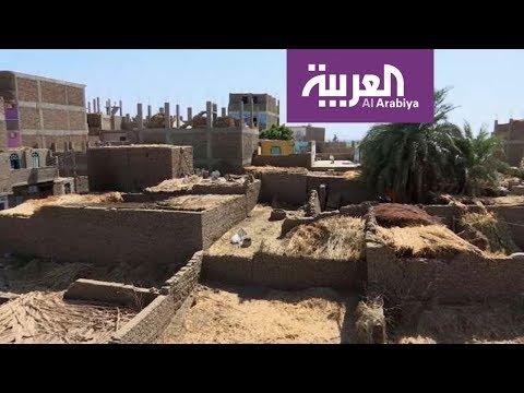صباح العربية | غزو النمل الأبيض للأقصر  - نشر قبل 3 ساعة