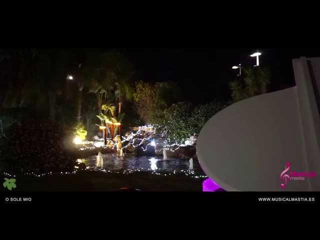 O Sole Mio - trio de cuerda y piano de cola Casón de la Vega Bodas Murcia Orihuela Weddings