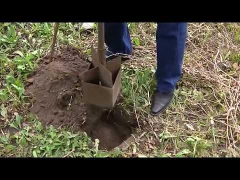 видео: Инструмент для копки ямок (не бур)