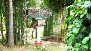 Njatuvela, Agricultural awareness - Organic Farming and Farm Tourism | ജൈവകൃഷി (Episode 180)