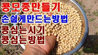 콩모종만들기 손쉽게 만드는방법 대원콩 면콩심는시기 콩심…