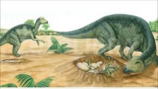 Download Video GenYoutube net      Mysteries of Dinosaurs Hindi 3GP MP3 3GP MP4