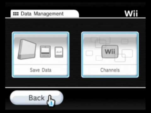 Hack Your Wii for Homebrew Apps and DVD Playback