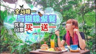 【旅游Vlog】Entopia:和蝴蝶一起用餐