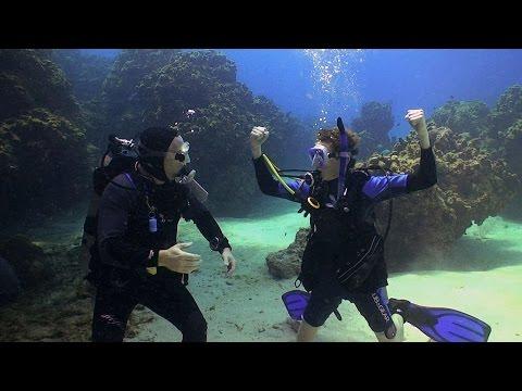 Jake Learns to Dive | JONATHAN BIRD'S BLUE WORLD