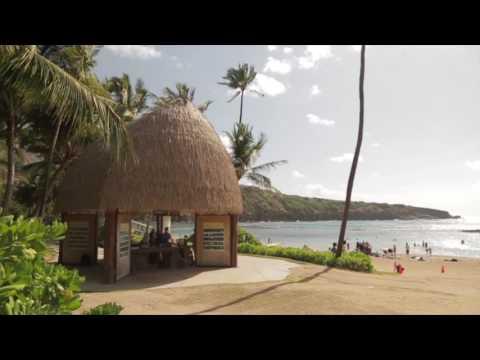 Hawaii Sea Grant Video