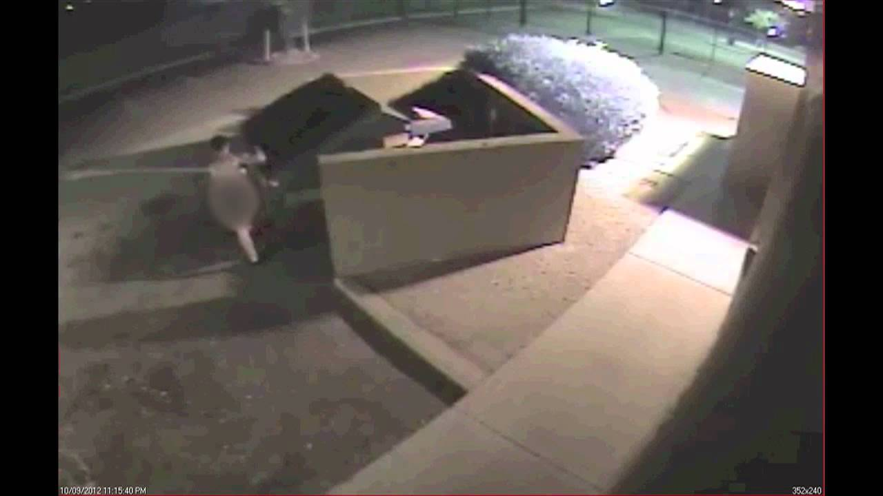 Police: Surveillance Video Catches Naked Man Pulling On