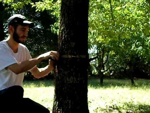 Trophyline Tree Saddle Ratchet Strap Platform Youtube