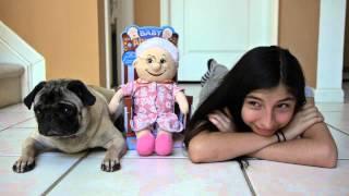 Buddy The Mischievous Pug: Esta Niña Linda