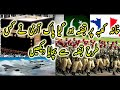 Pakistan number 1 army in the world  Terrorist attack in makka pakistan army got success to arrest