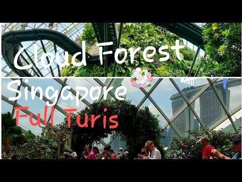 TAMAN Cantik di GedungKaca AC🌸💐FULL Turis 😃//Cloud Forest_Garden by the Bay Singapore 2019*Part1