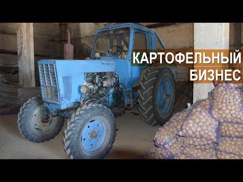 КАРТОФЕЛЬНЫЙ БИЗНЕС Валерия Пряничникова