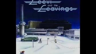 Leevi and the Leavings - Viisas talonmies