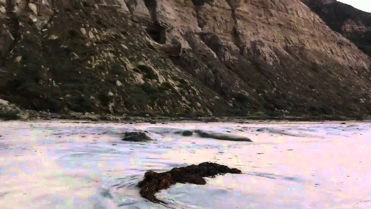 Blacks Beach California Nudist Beach - Youtube-5728