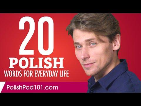 20 Polish Words for Everyday Life - Basic Vocabulary #1