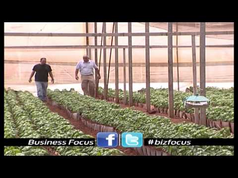 Business Focus: 2013 Ep#1  Drip Irrigation