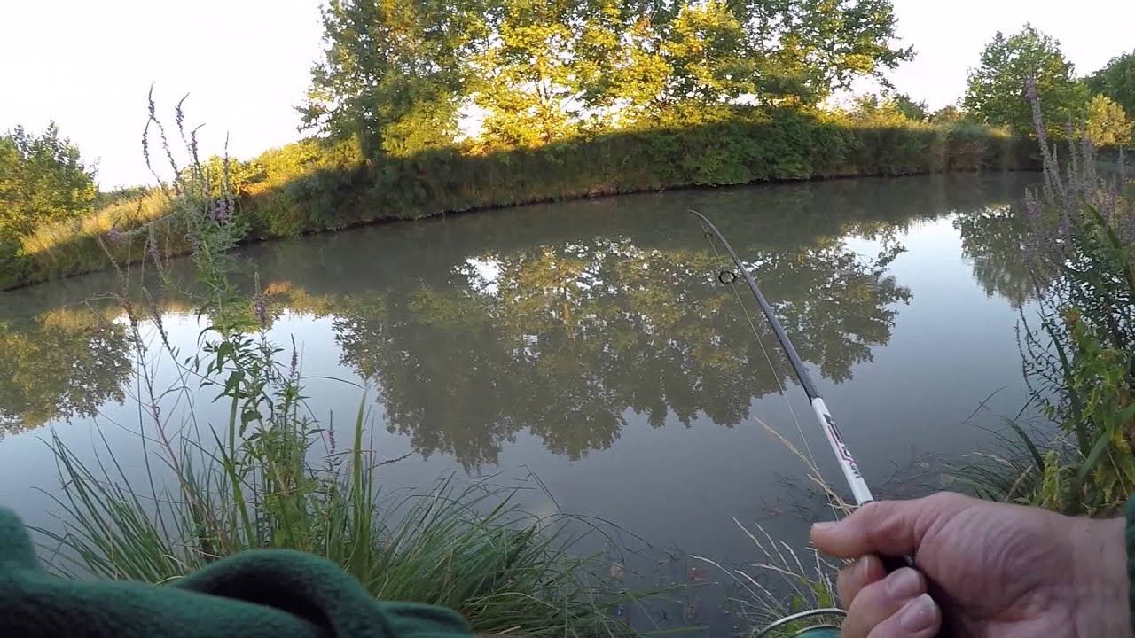 P che canal du midi silure aux leurres gopro hd youtube for Architecte canal du midi