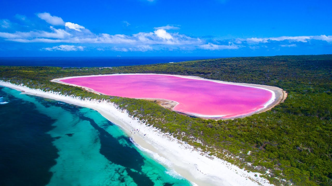 Image result for Lake hillier