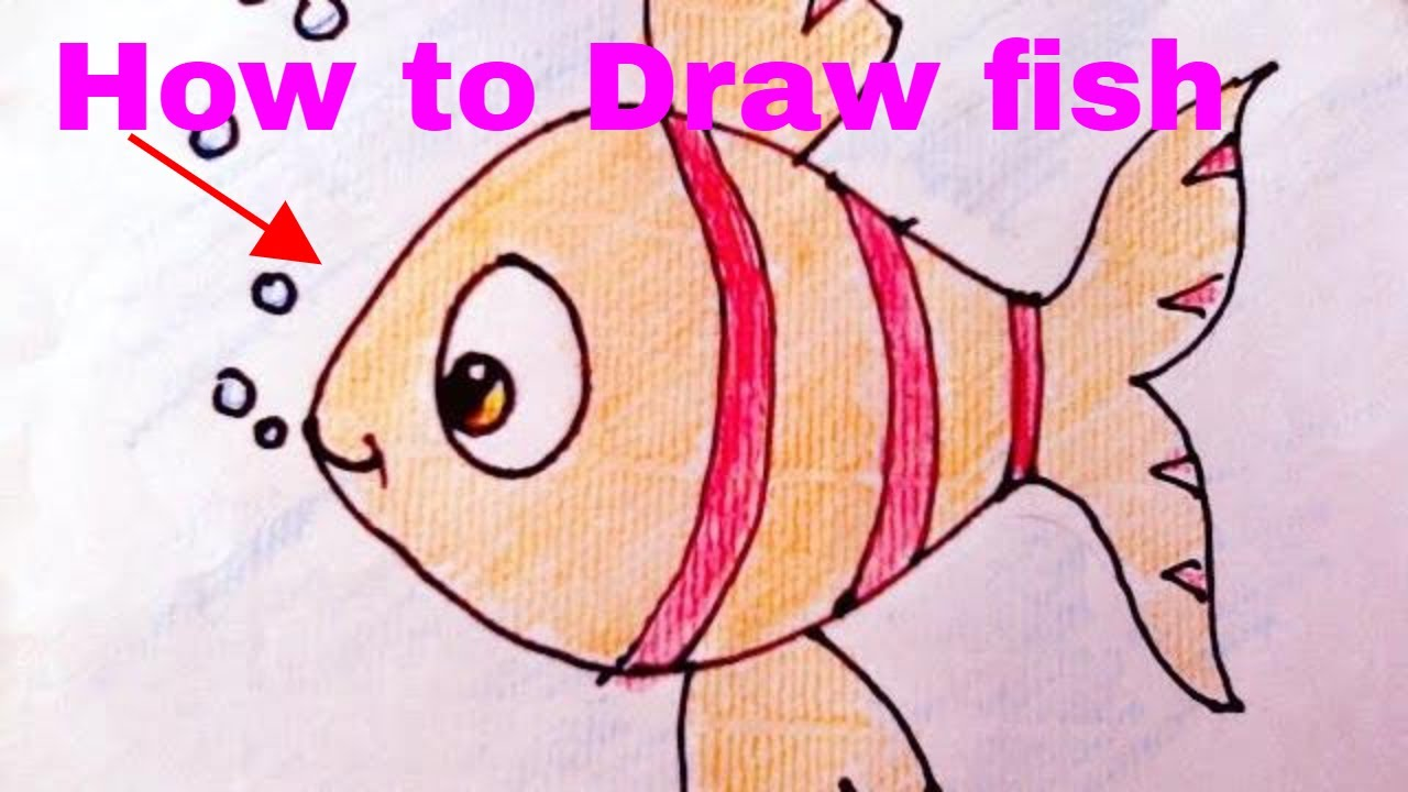 drawinghow to draw fish and colour for kids art youtube