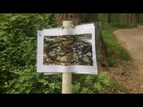 Sligo Middle School 7th Grade Nature Hike