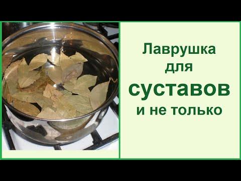 Лавровый лист - чистим и лечим суставы// Рецепты в описании