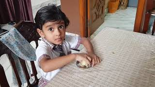 Indian kids lunch box routine 2018 / Lunch box ideas & kids related problems