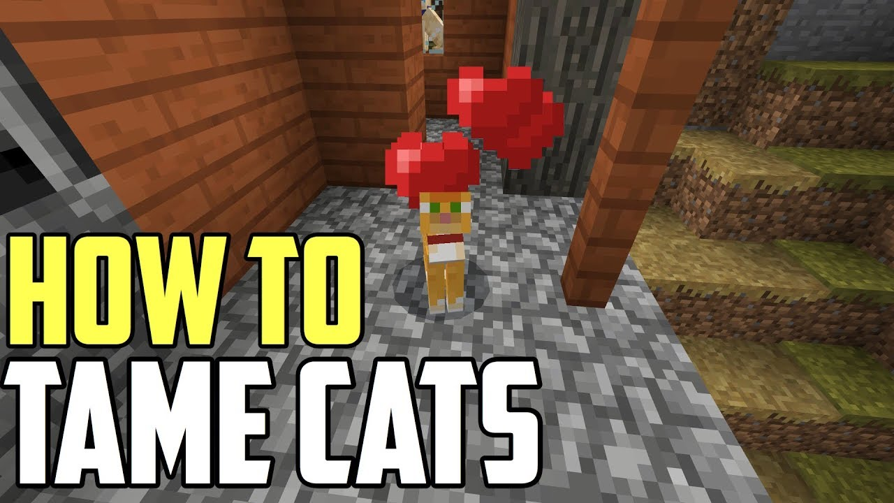 How To Tame Cats In Minecraft 1 8 (Xbox/PE/Switch)