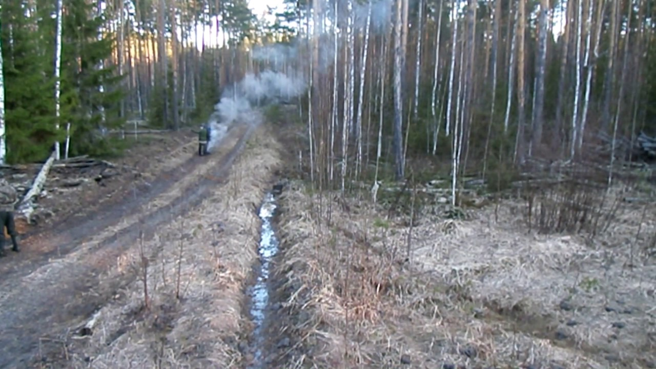 Развел в лесу фото 641-896