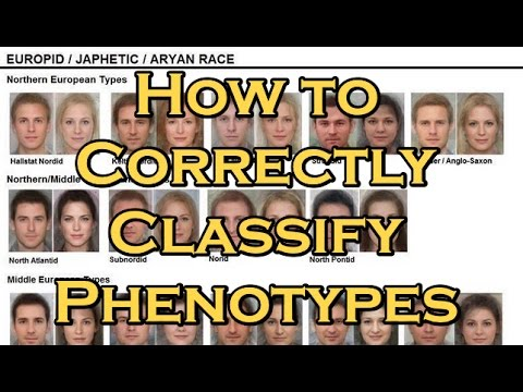 How to Classify Human Phenotypes and Subracial Groups