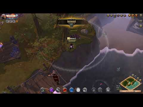 Fishing Shark At Albion Online.