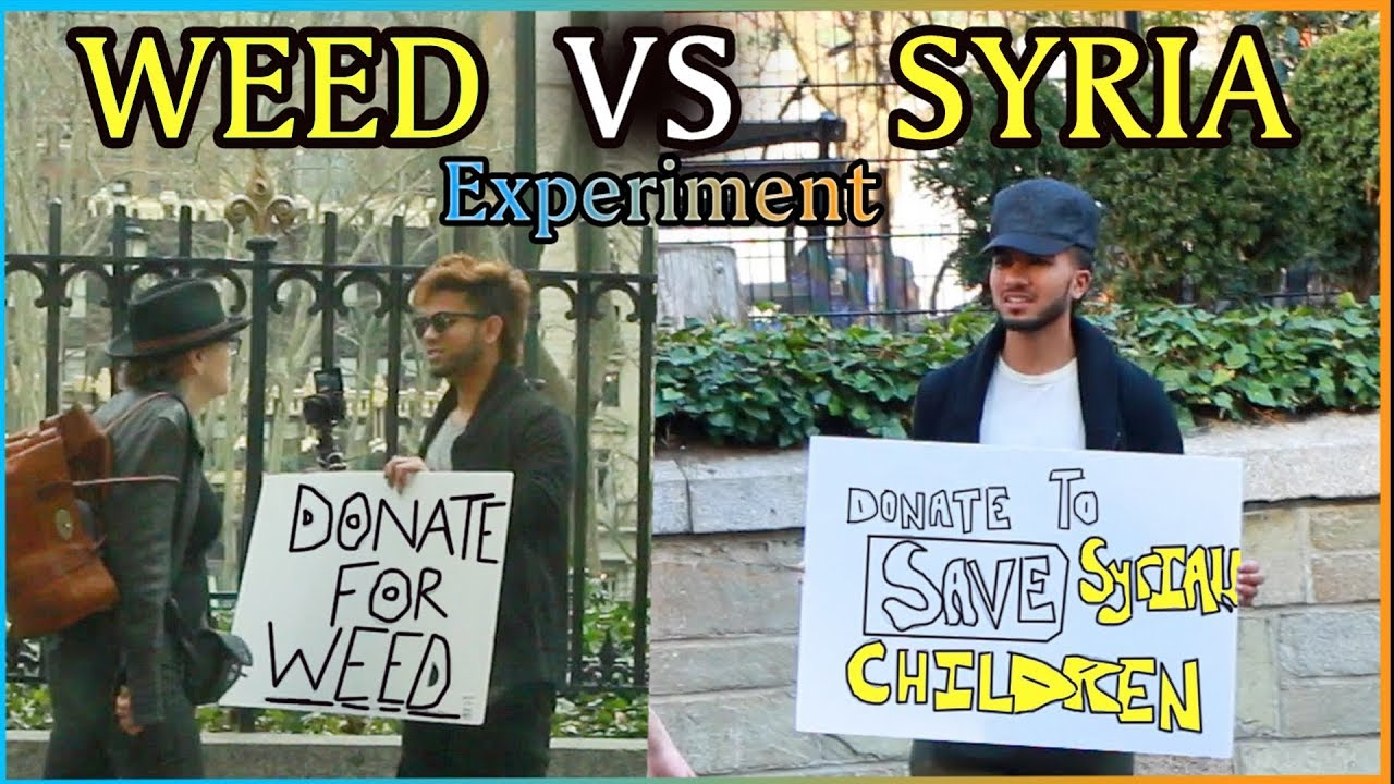 Donate for SYRIA Vs Donate for WEED Experiment (Social Experiment)