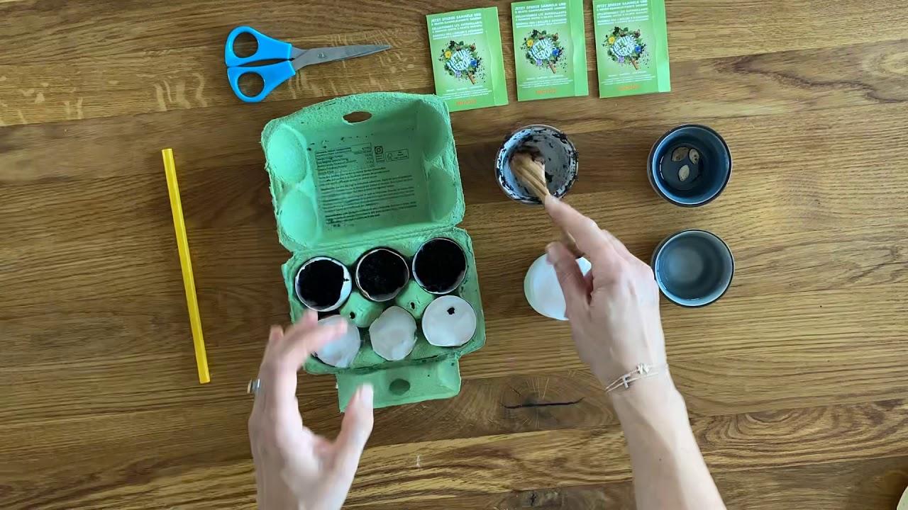 DIY - mit MIgros Saatgut zum tollen Garten für Kinder