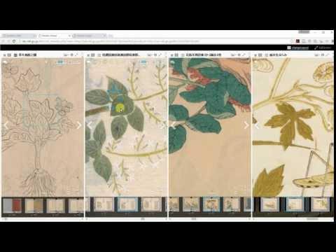 国デコImage Wallの使い方(IIIF/Mirador編) A tutorial of Kunideco Image Wall