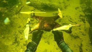 Found Crashed Drone While Scuba Diving Abandoned Bridge! (Unbelievable Find)