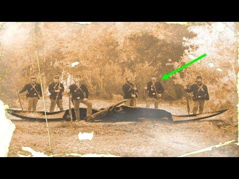 The Truth Behind The Mysterious Civil War Era Pterosaur Photograph