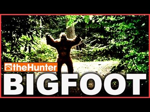 theHunter BIGFOOT