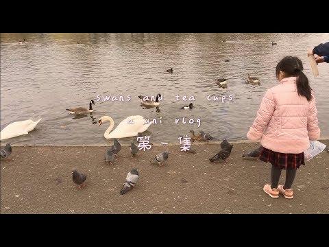 swans and teacups 🍵 | a simple life vlog | studycharms
