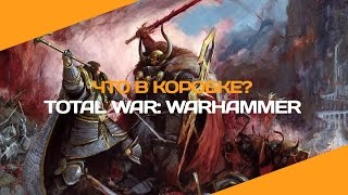 Total War: Warhammer. Что в коробке? | Распаковка High King Edition