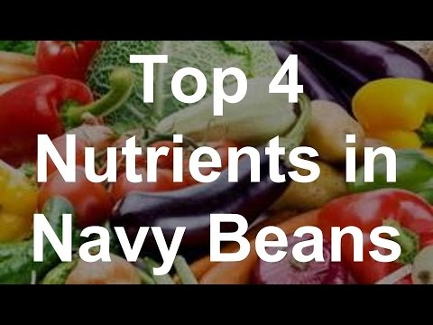 Top 4 Nutrients in Navy Beans - Health Benefits of Navy Beans