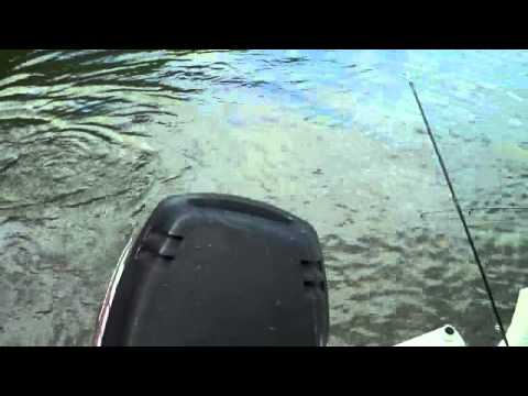 Trout fishing tulloch lake william and mike kinsley youtube for Lake tulloch fishing