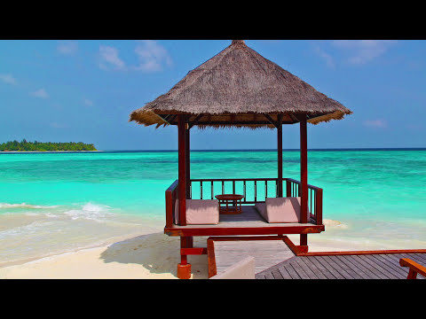 Relaxing Ambient | Tropical Island Beach